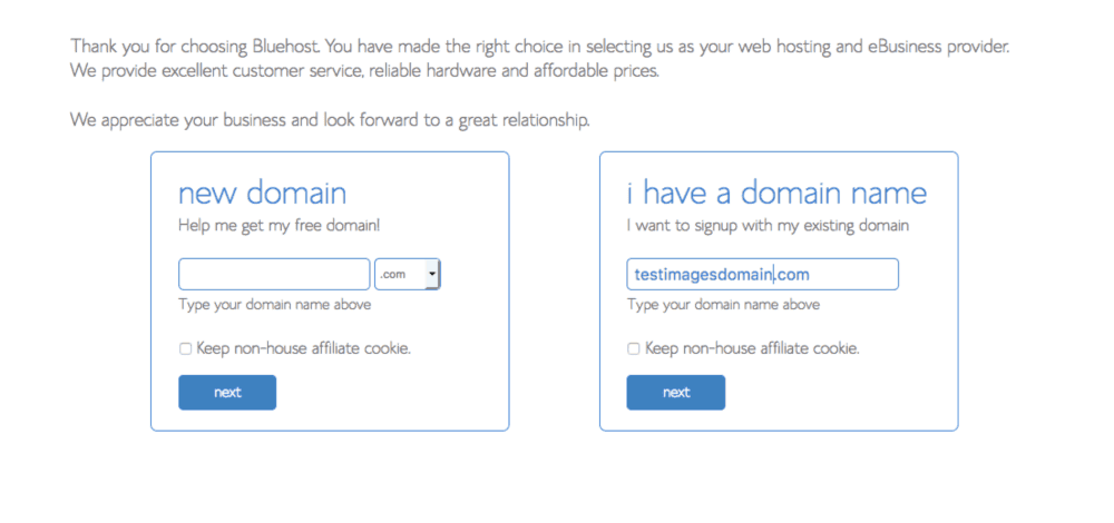 Pick a domain name or put in an existing plan