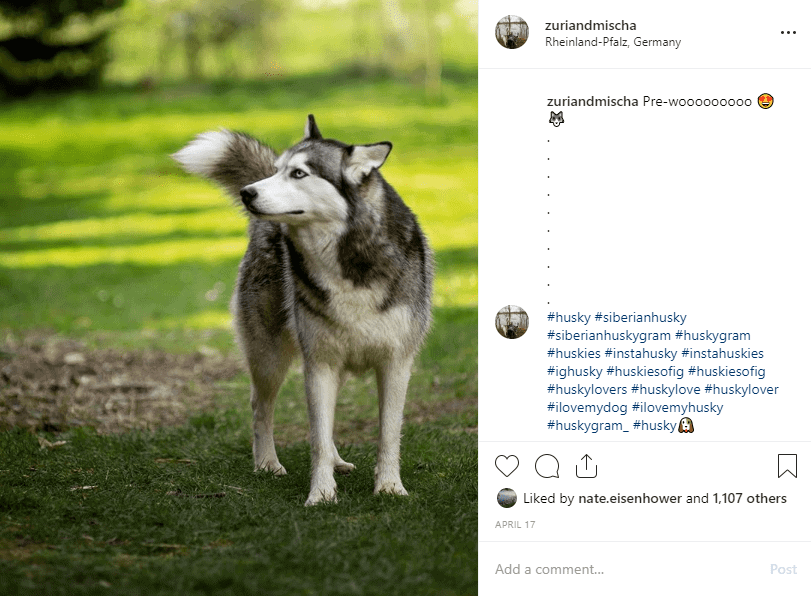 Hide hashtags on Instagram in the Caption